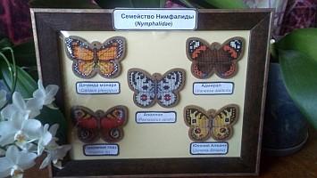 Бесплатные схемы для вышивания Бабочки для интернет-магазина У Люсиль